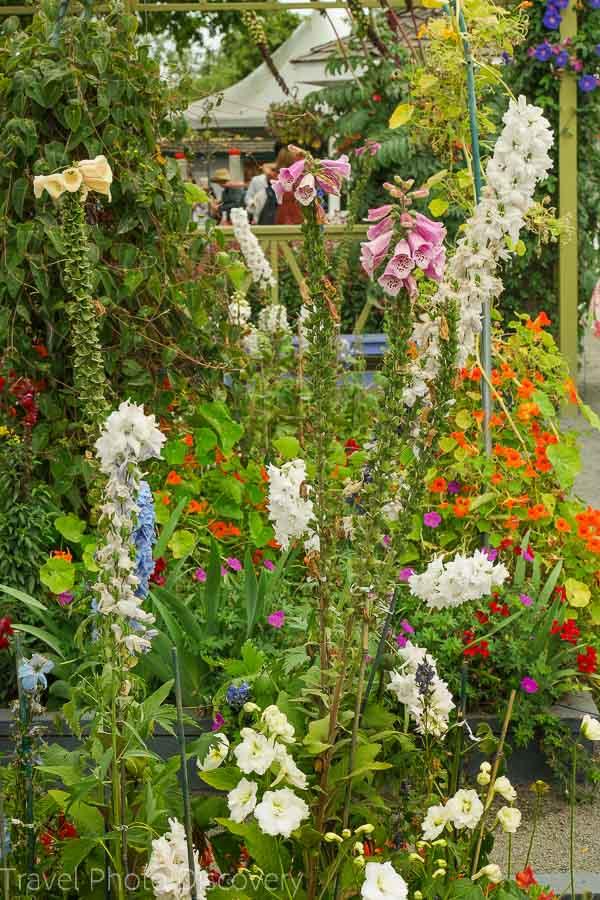 Enjoy a demonstration garden at Carlsbad