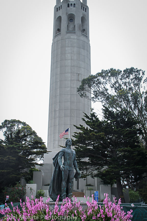Reaching the top at Telegraph hill