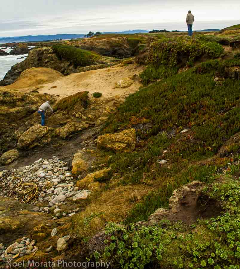 Explore the famous Glass beach in Fort Bragg at MacKerricher State Park