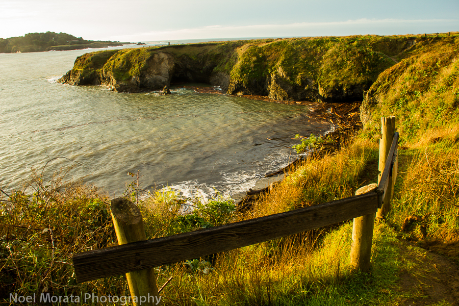 Visit the state parks surrounding Mendocino town
