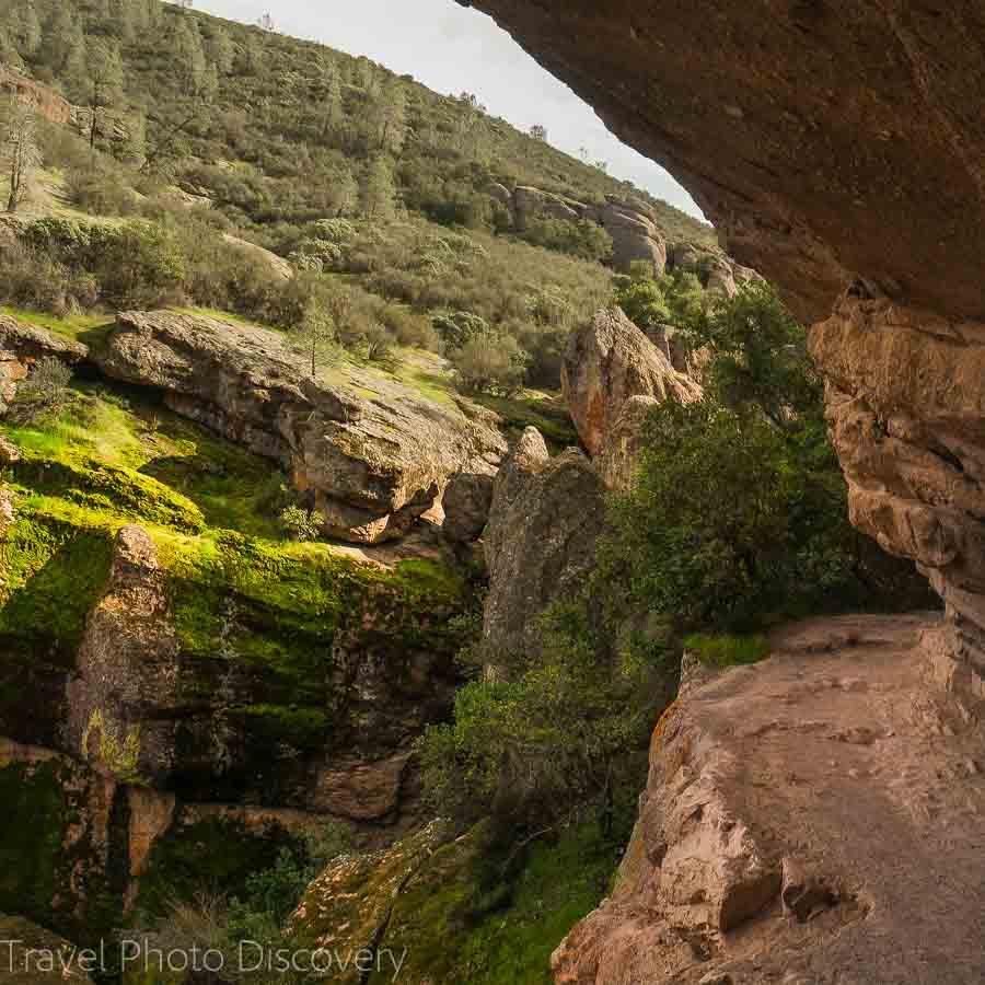 Things to do at Pinnacles National Park