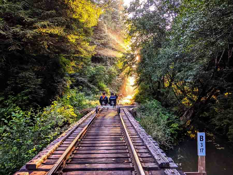 Go on a Railbike tour or on the Skunk Train