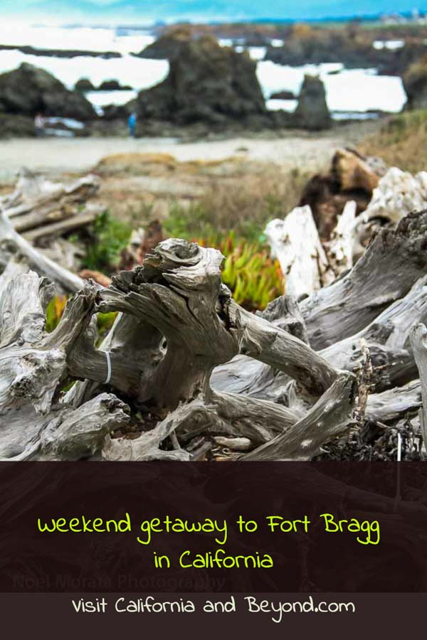 Weekend in Fort Bragg in Northern California