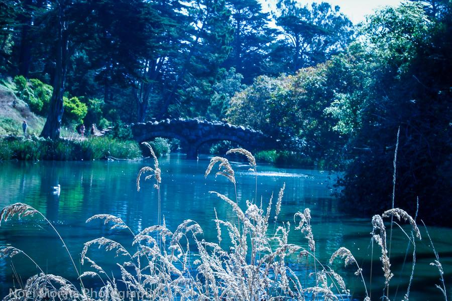 History of Stow Lake