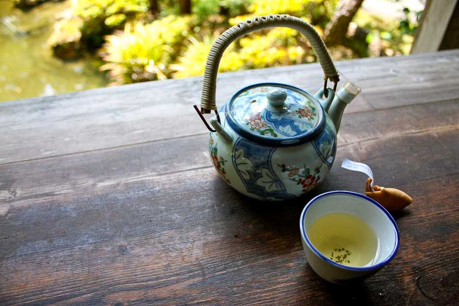 Conclusion to visiting the Japanese Tea Garden