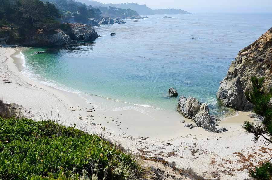 Visit Point Lobos State Natural Reserve