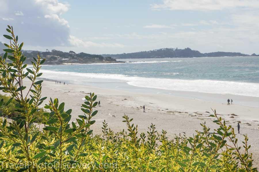 Enjoy a coastal drive or walk along Carmel's Scenic Road