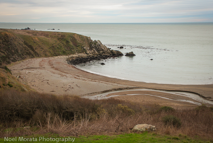 Drive to the gorgeous coastline areas of Sonoma County