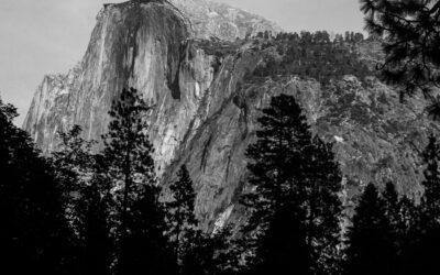 California's National parks, State parks and historic sites